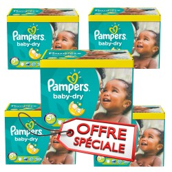 Maxi giga pack 325 Couches Pampers Baby Dry taille 5+ sur Couches Zone